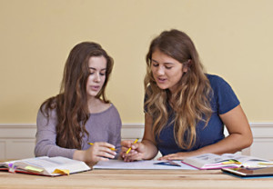 Small-Group Math or Reading Classes